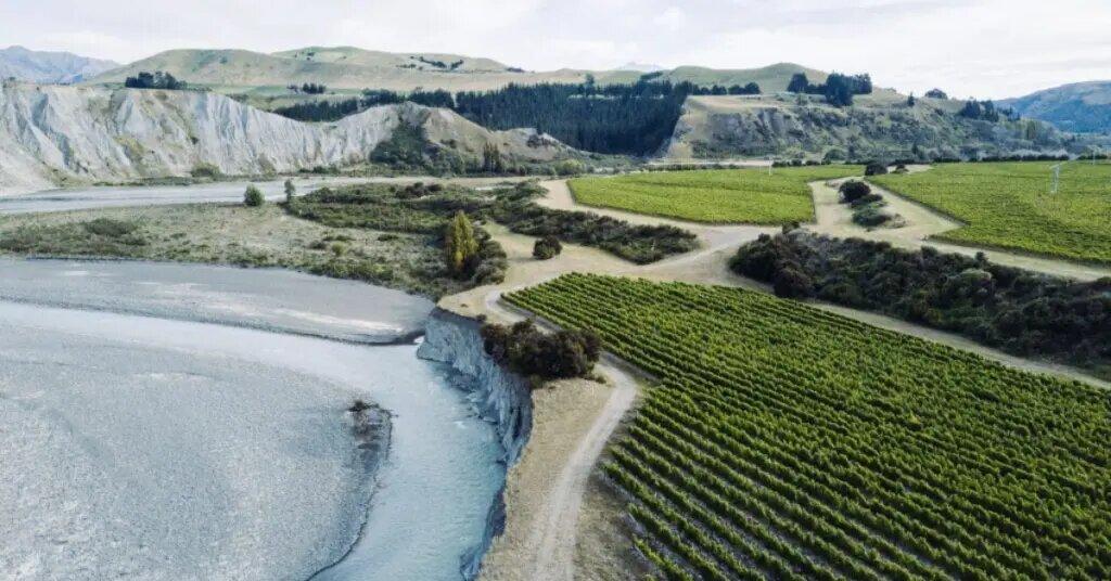 Marlborough, New Zealand, famous for its sauvignon blanc wines
